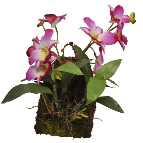 LR Hanging Orchid Purple IF-18